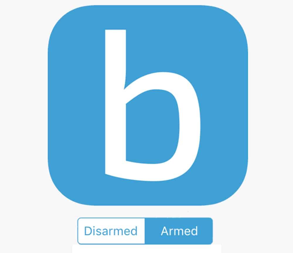 Blink Logo + Armed or Disarmed